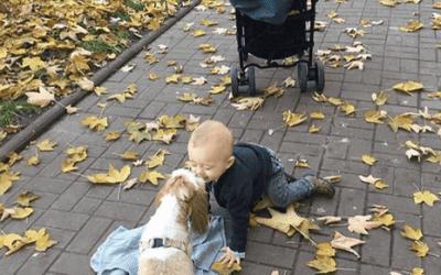 Jesienne sposoby na spędzanie wolnego czasu z dzieckiem